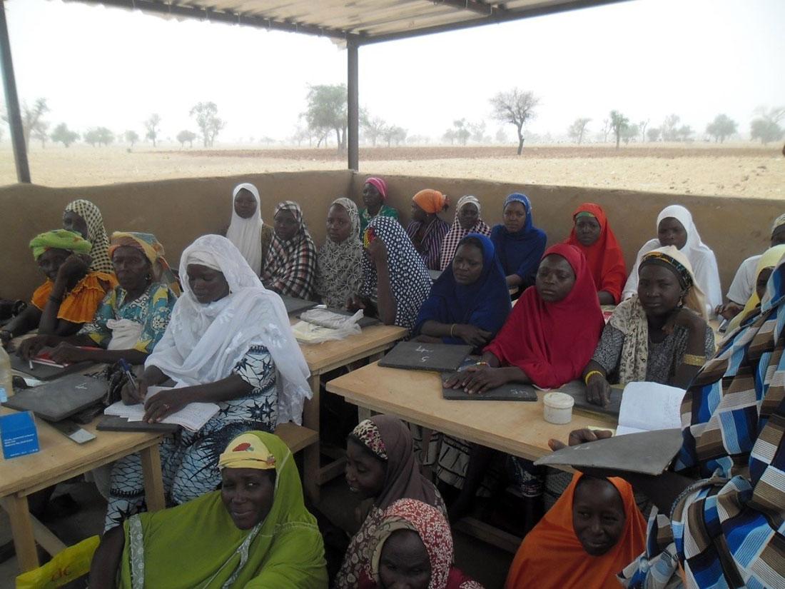 Cideal en Niger
