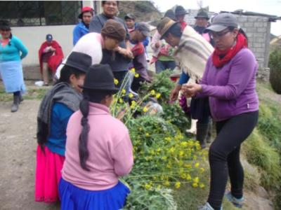 Agricultura urbana y seguridad alimentaria en la ciudad de Azogues, Ecuador.