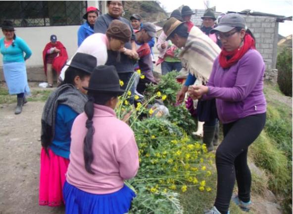 Proyecto_Ecuador Soberanía Alimentaria